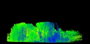 Laserscan Wald Grün bis Blau